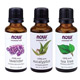 NOW® Essential Oils Most Popular Pack(3 Bottles): Tea Tree, Eucalyptus, Lavender